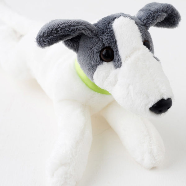 Beanie puppy green