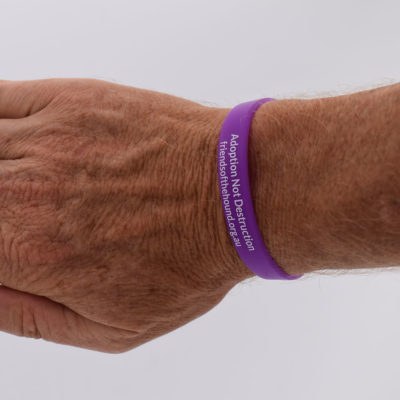 Wristband – Greyhounds are great pets