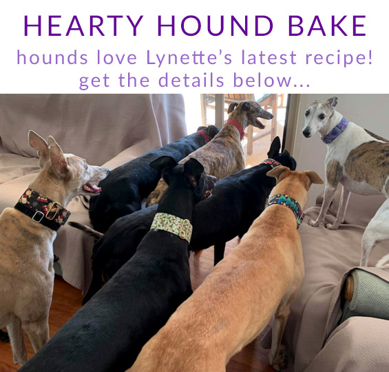 Lynette's hearty hound bake