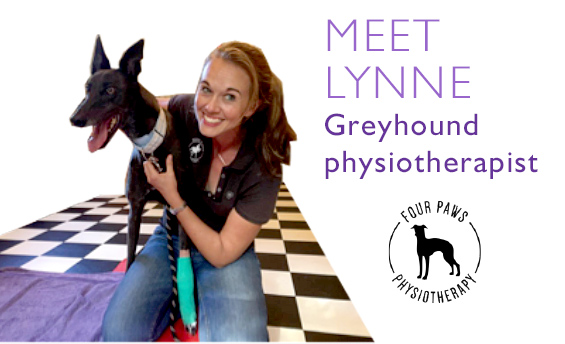 Greyhound Physiotherapist - Meet Lynne