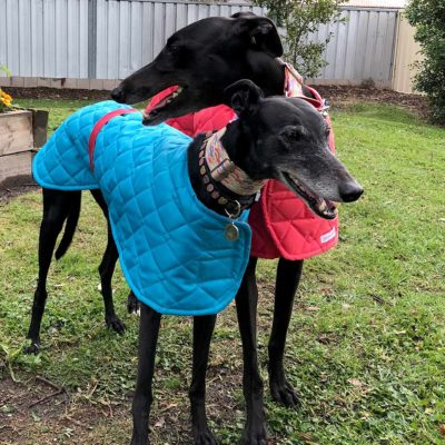 Jackie & Sparkie custom coats