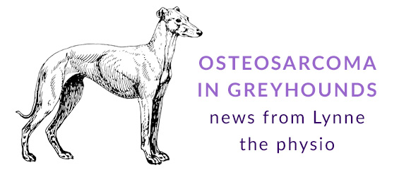 Osteosarcoma in Greyhounds