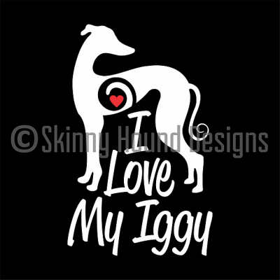Car decal - I love my Iggy