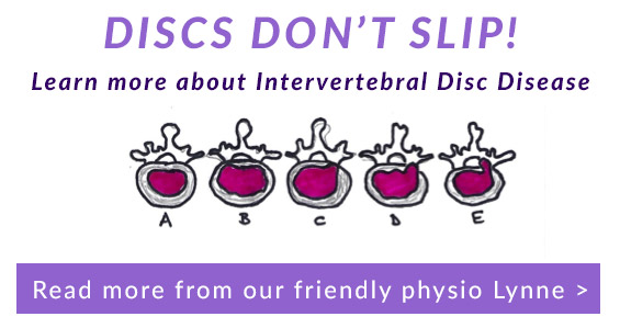 Discs don't slip - our latest physio news
