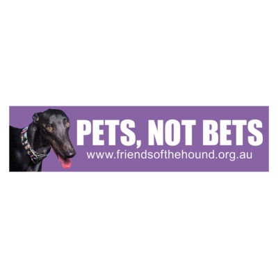 Sticker - Pets not bets