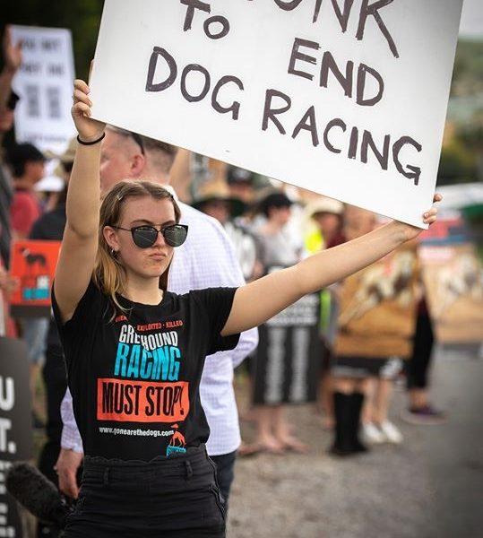 Honk to end dog racing