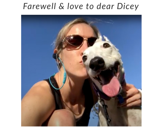 Farewell Dicey